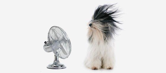 J.M. Air climatisation chauffage Thermopompe Montréal