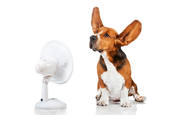 J.M. Air Heating Montreal
